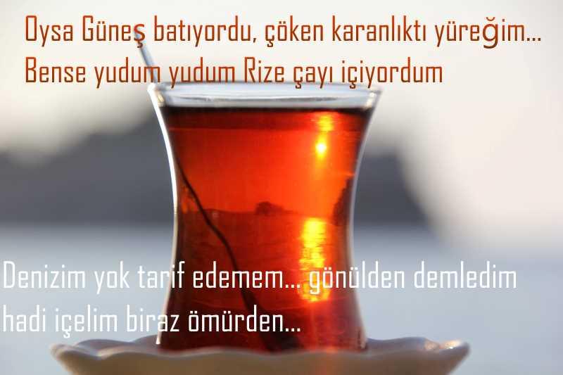 sayfa8282