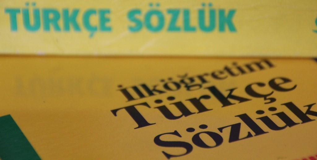 Türkçe Nereye Koşuyor